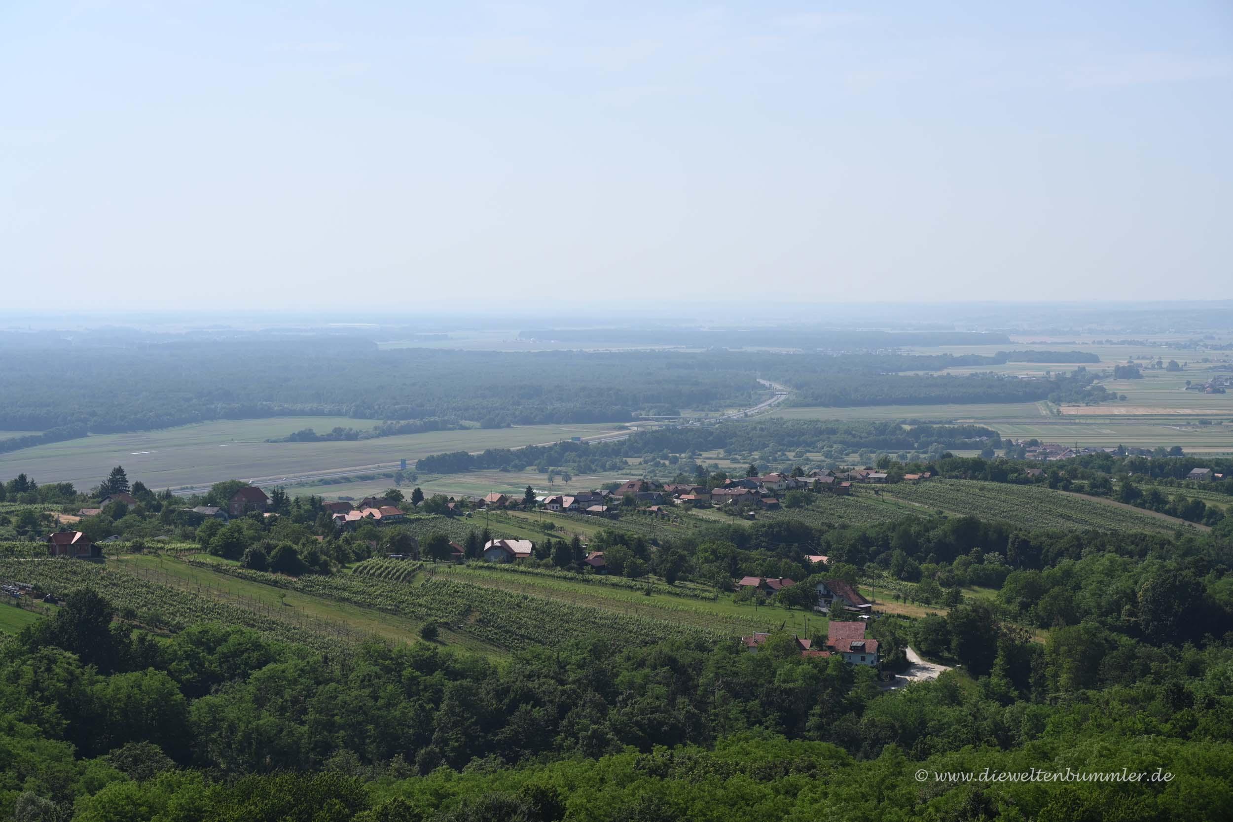 Weinlandschaft im Osten von Slowenien