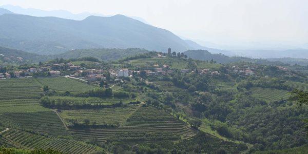 Weinregion im Westen von Slowenien