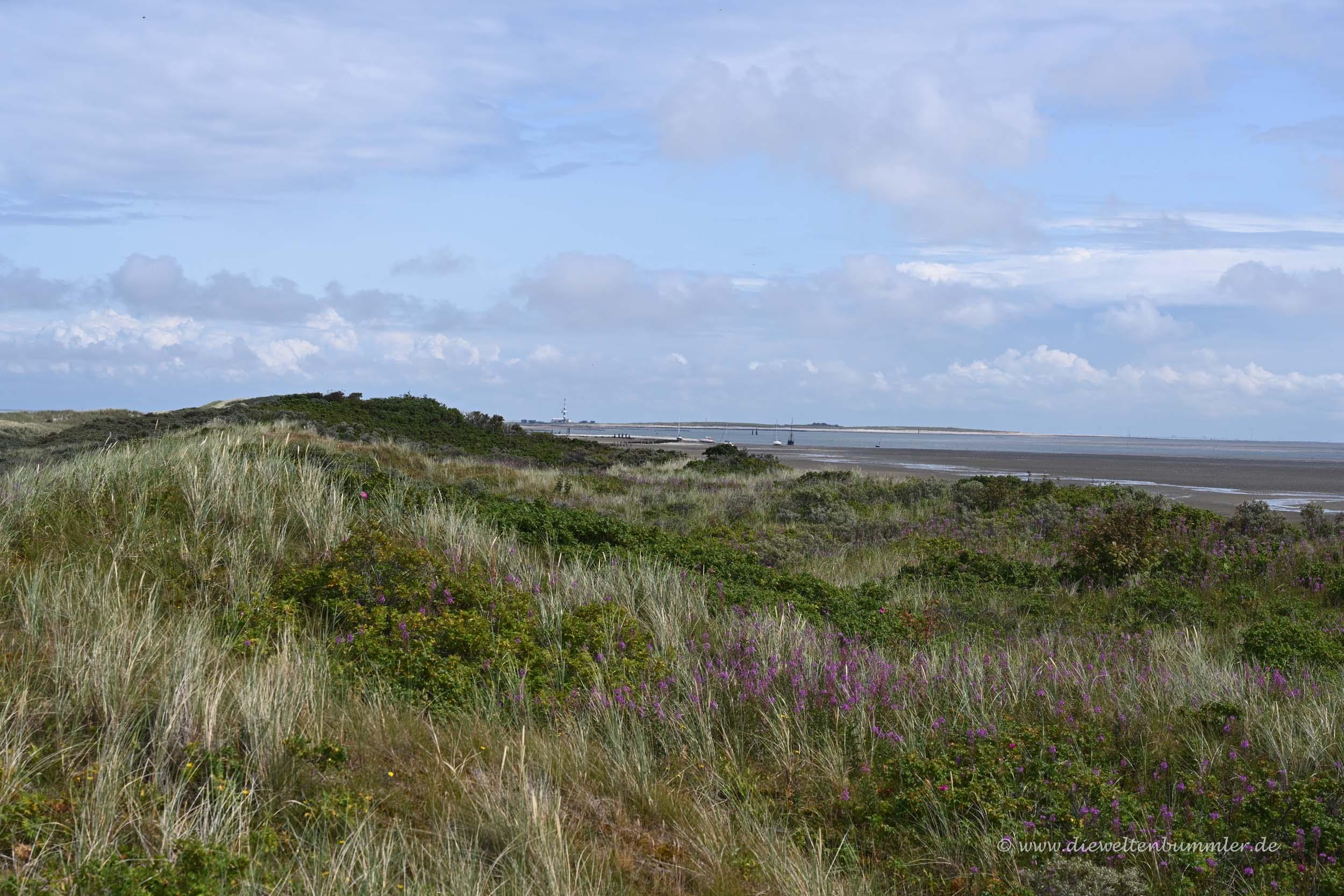 Wangerooges Landschaft