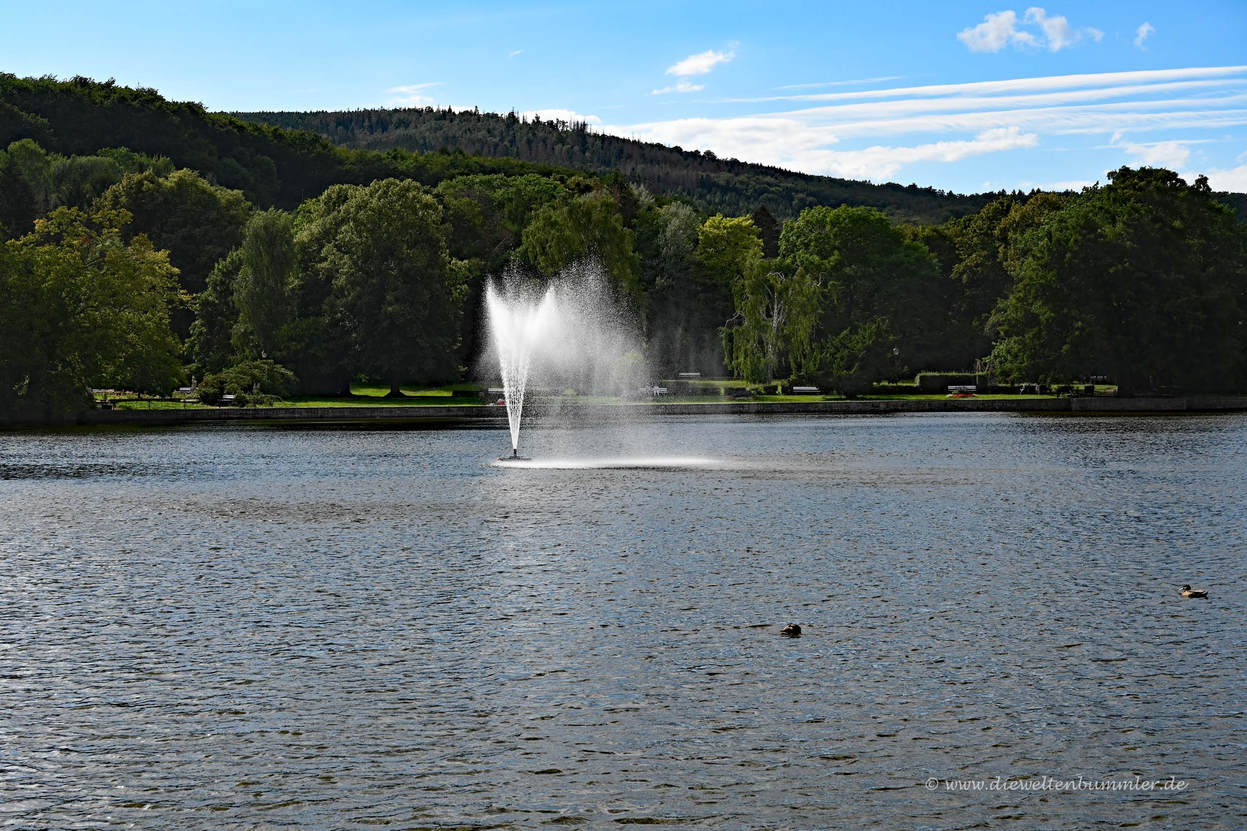 Teich mit Brunnen in Ilsenburg