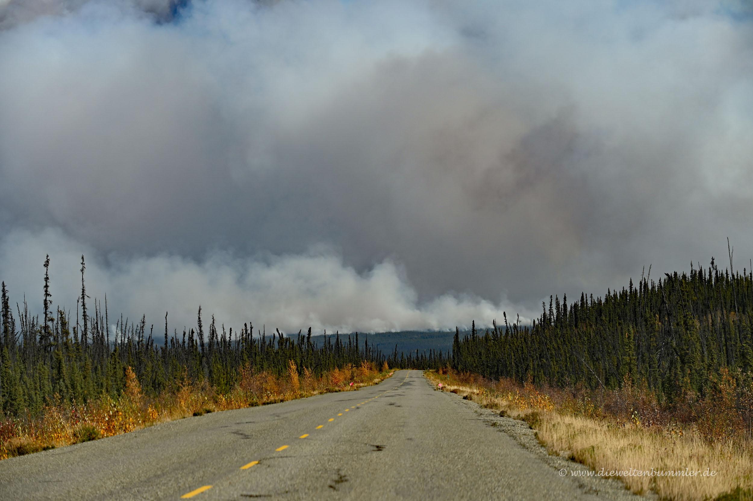 Waldbrände im Yukon