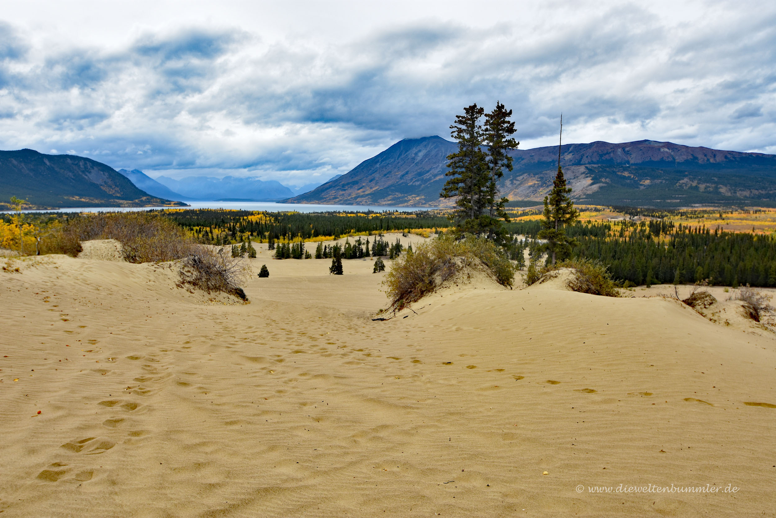 Carcross im Yukon