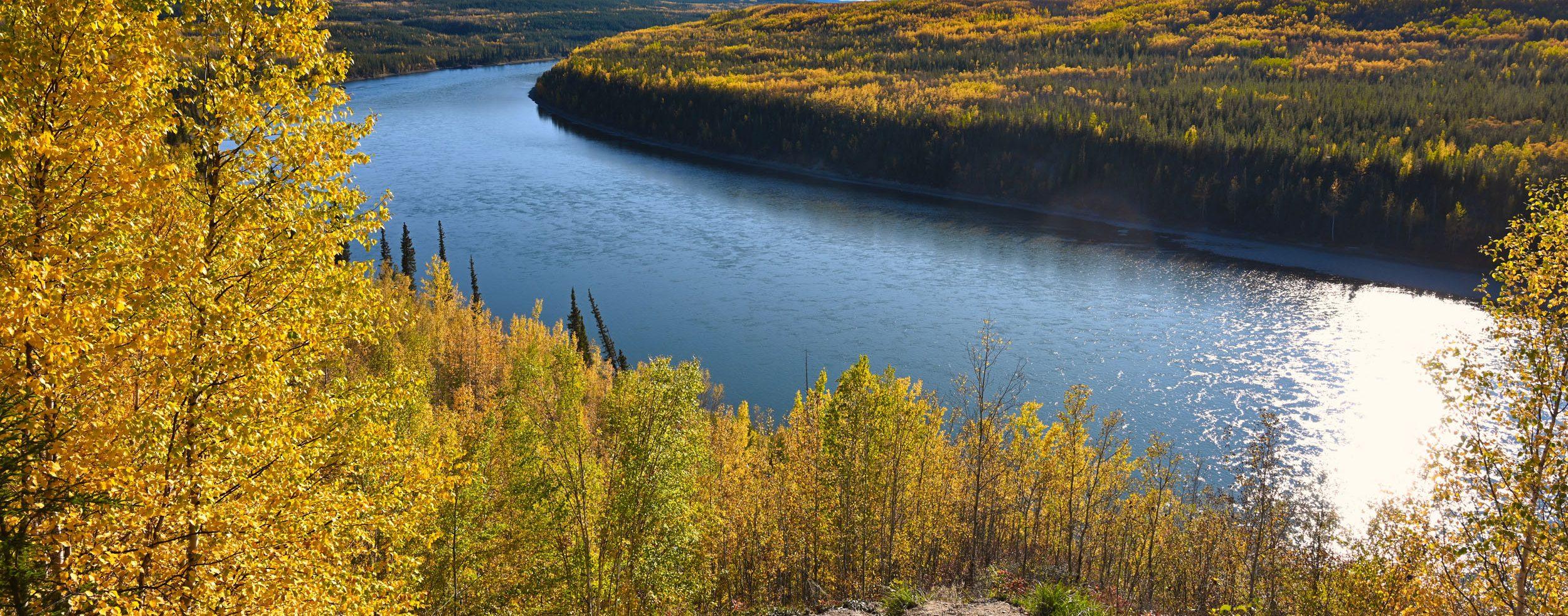 Blick auf den Liard River