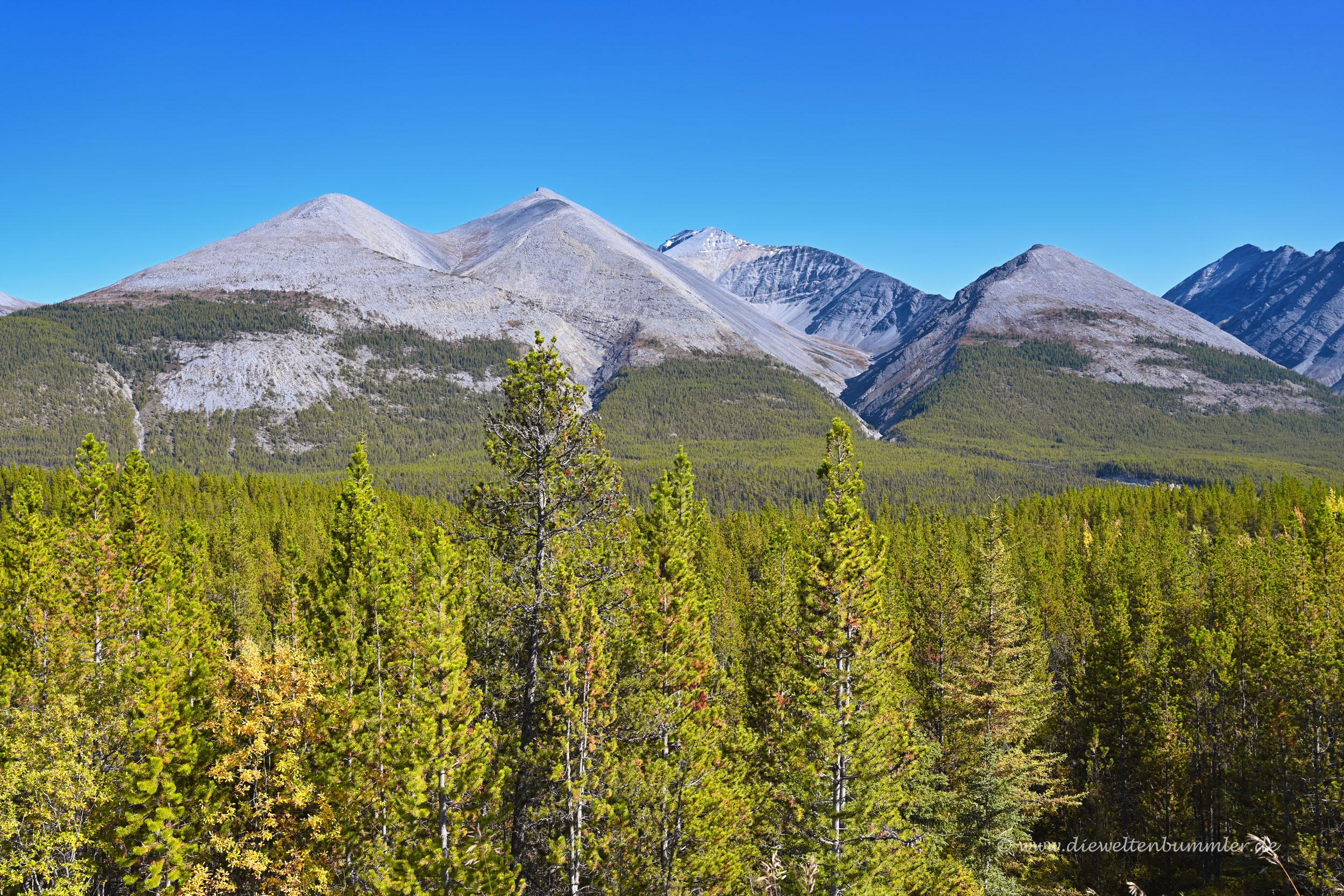 Gipfel der Northen Rockies