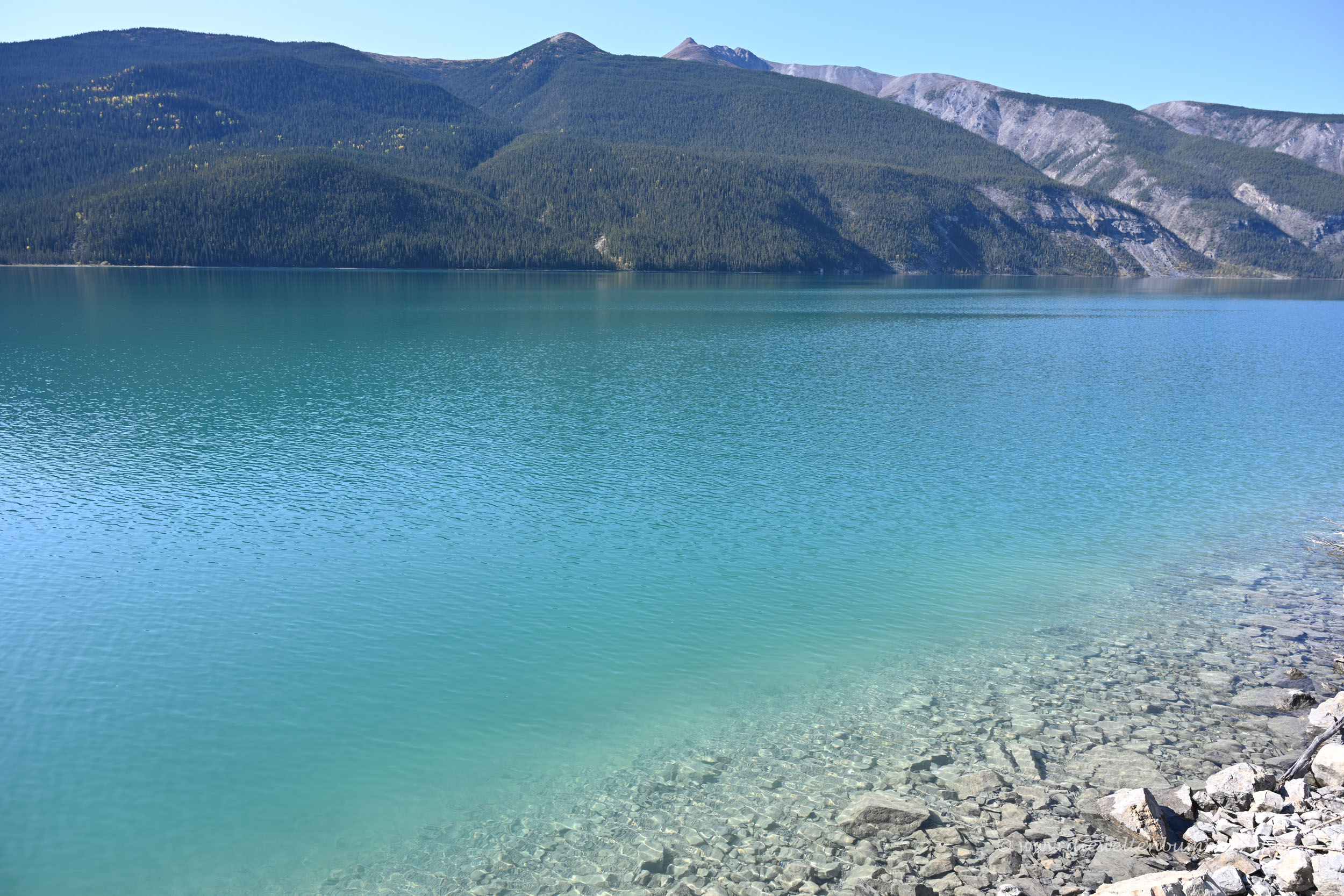 Toller See