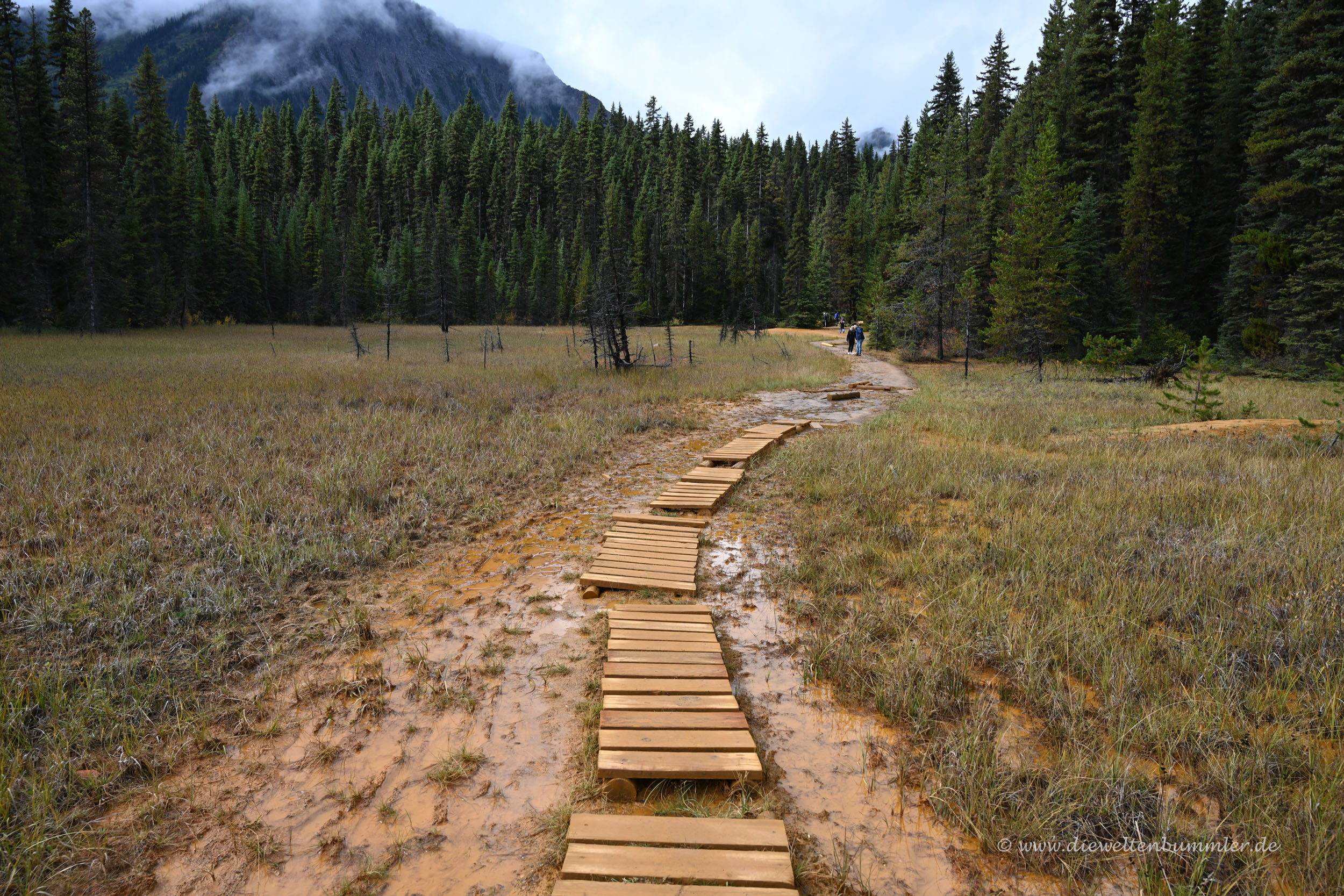 Wanderweg in Kanada