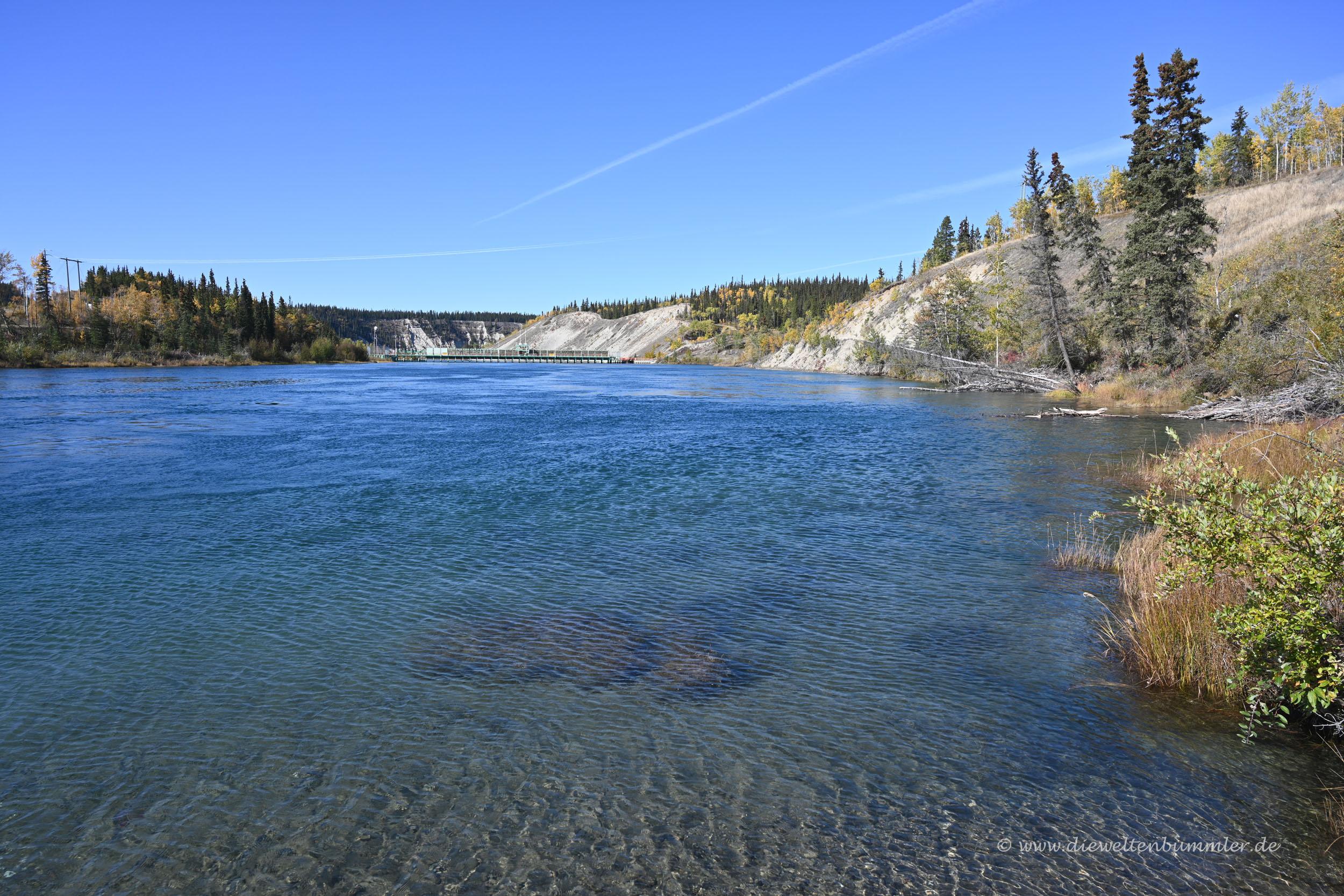 Am Yukon River
