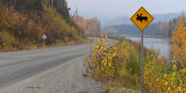 Unterwegs auf dem Klondike Highway