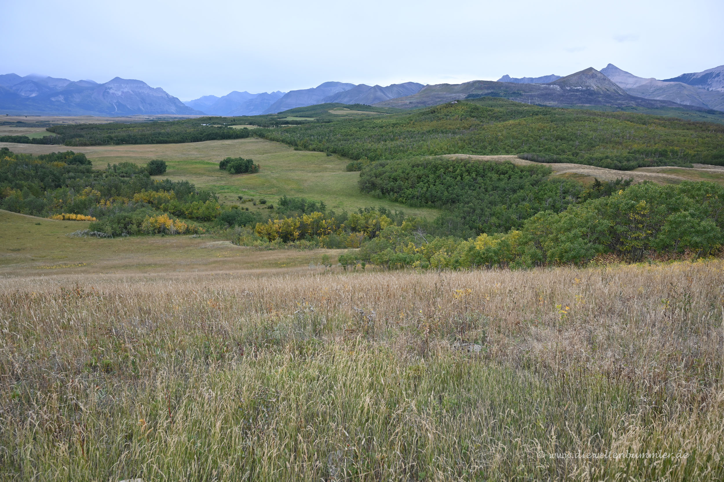 Landschaft beim Waterton Lakes Nationalpark