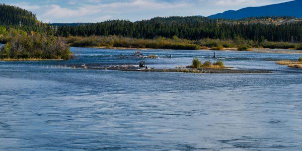 Yukon in Whitehorse
