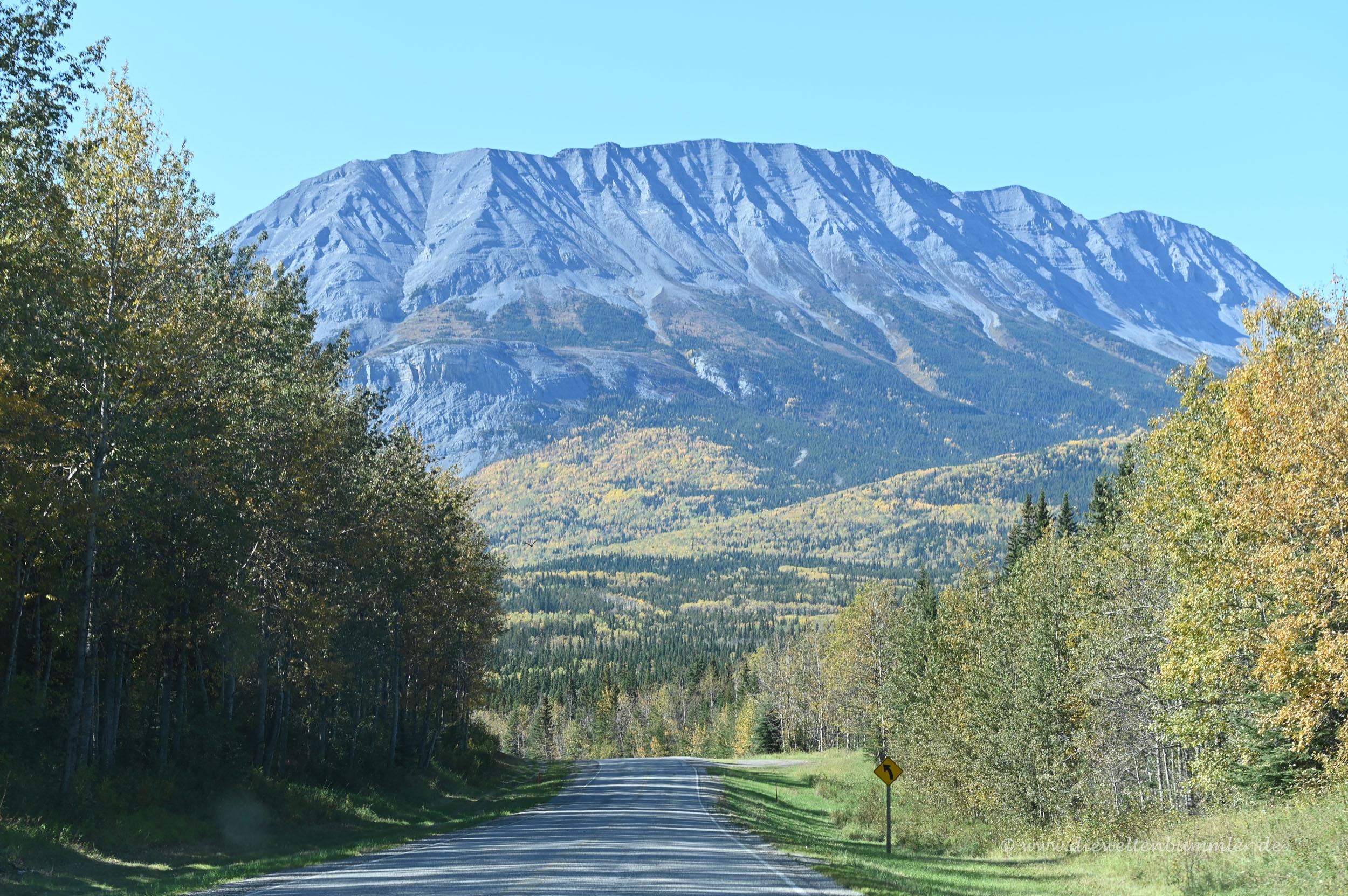 Tolle Landschaft am Alaska Highway
