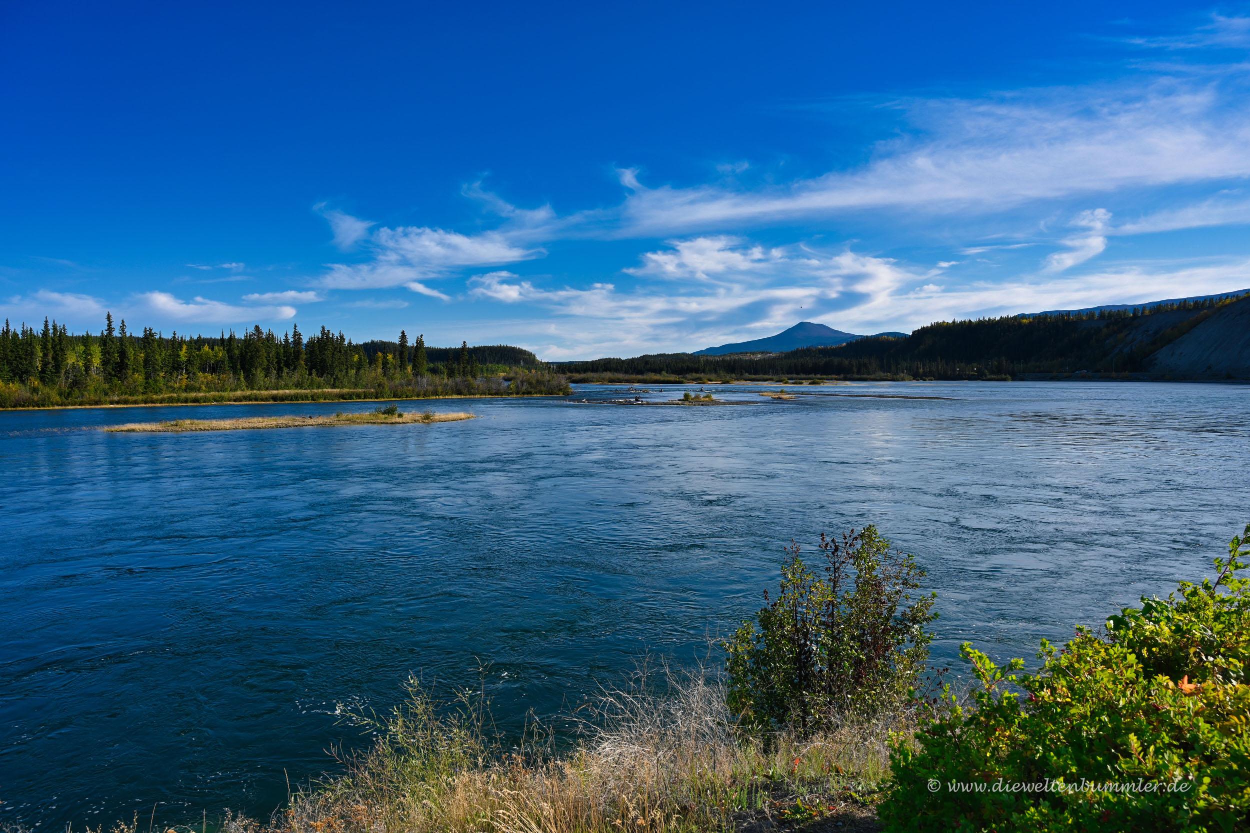 Spaziergang am Yukon