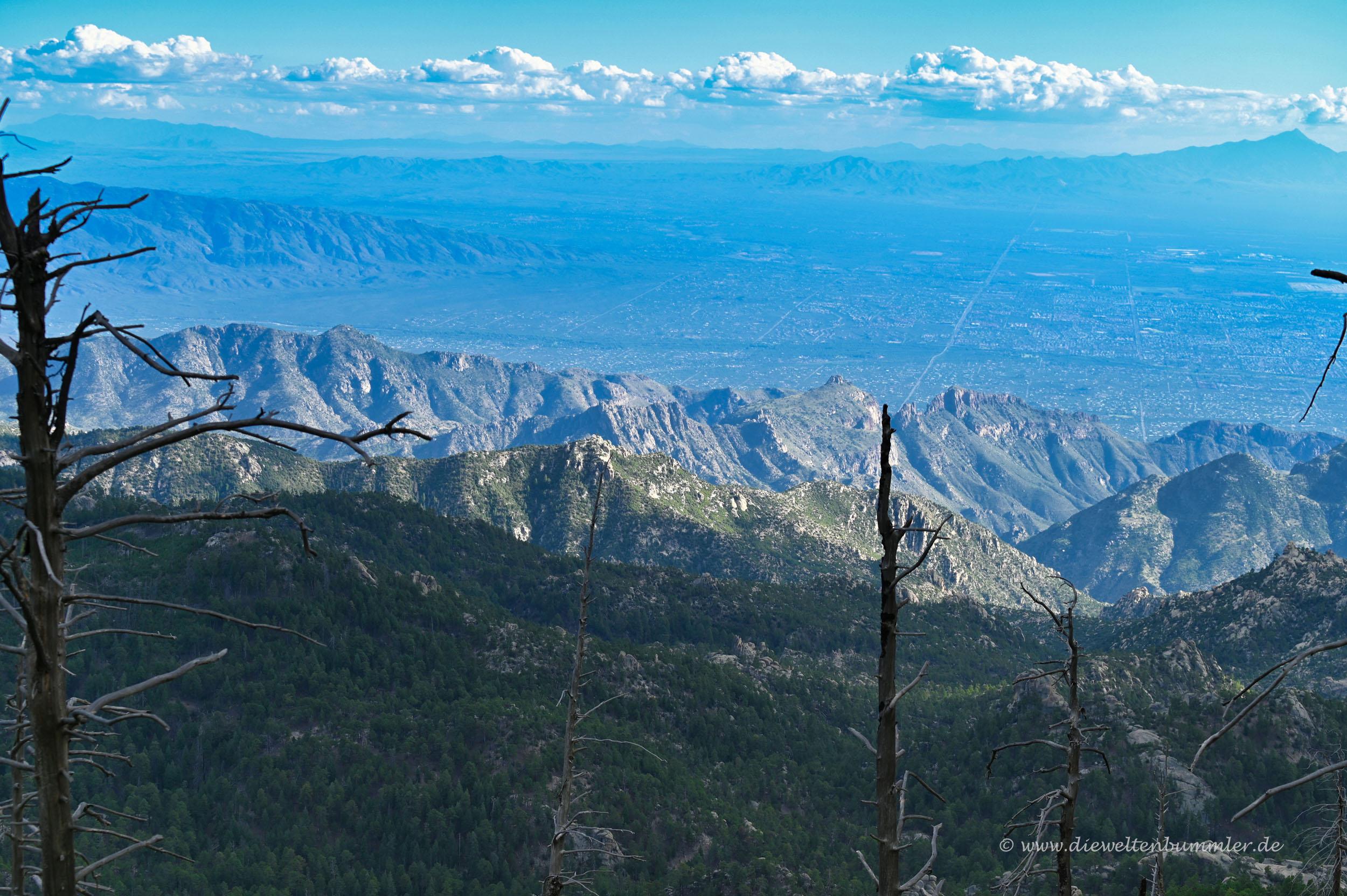 Ausblick vom Mount Lemmon