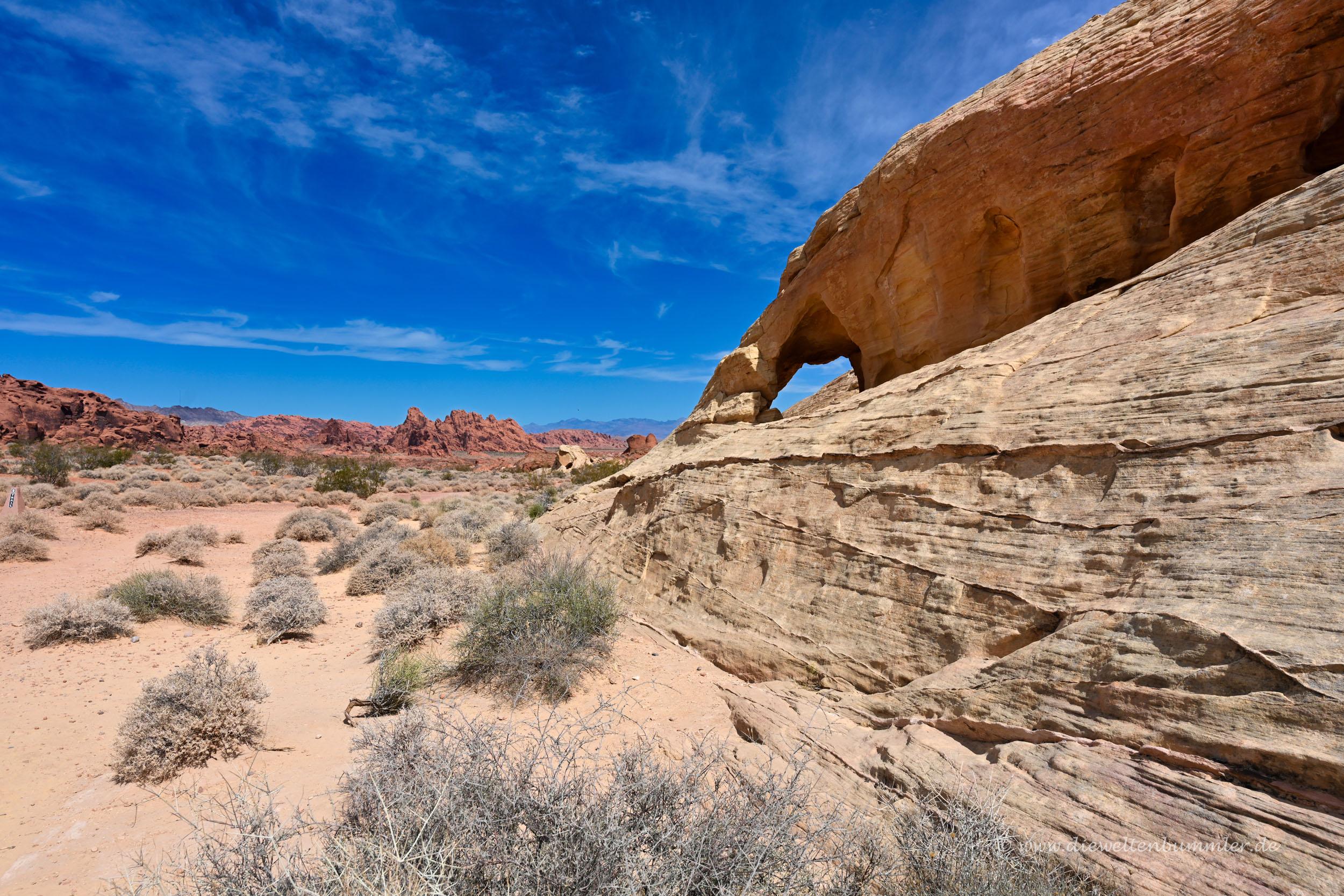 Landschaft in Nevada