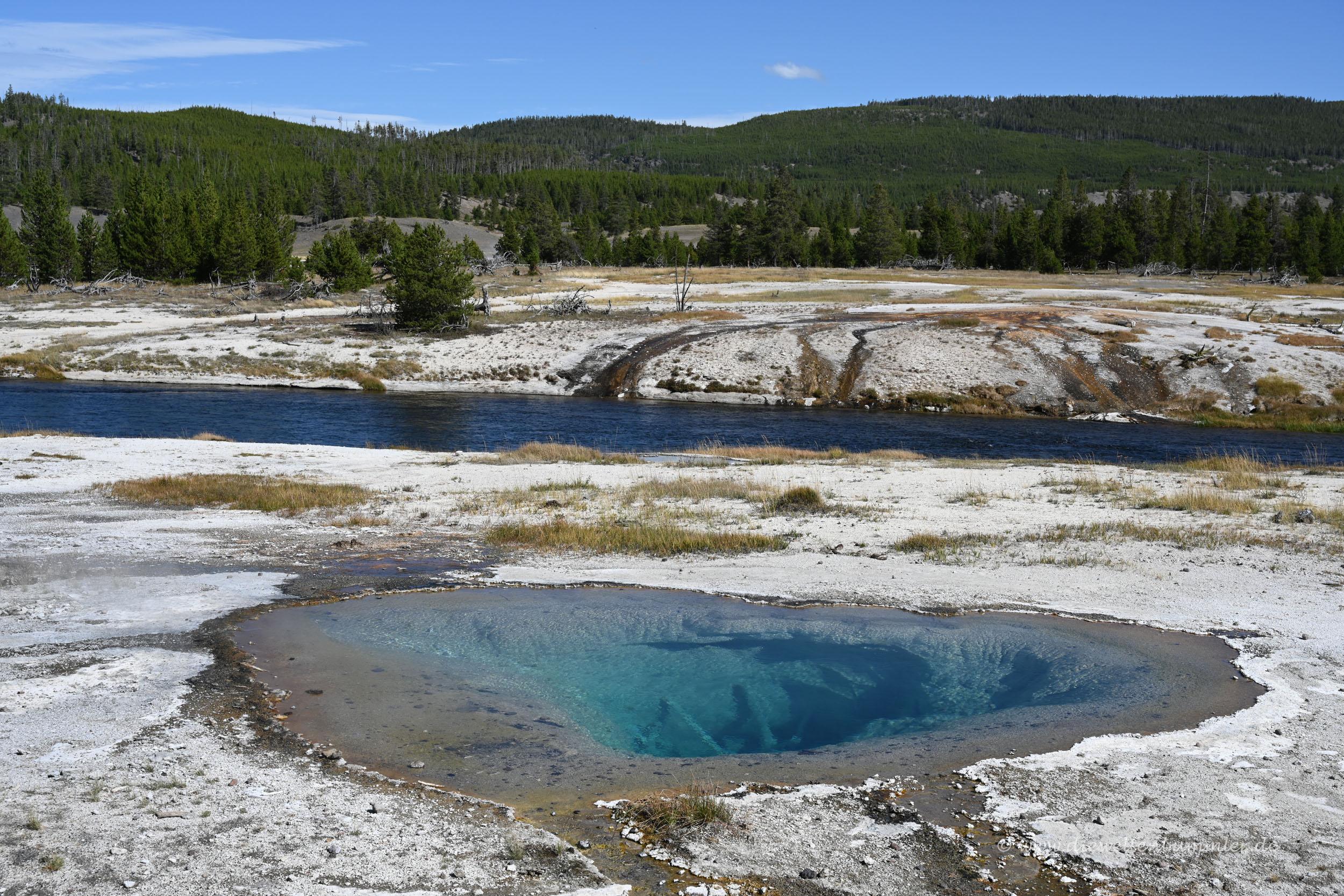 Typisch für den Yellowstone