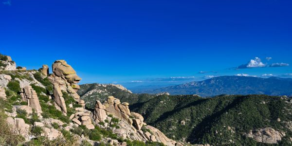 Felsen am Mount Lemmon