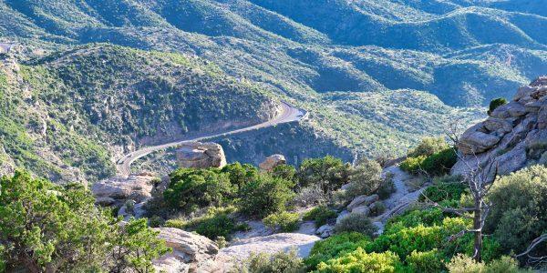 Straße zum Mount Lemmon