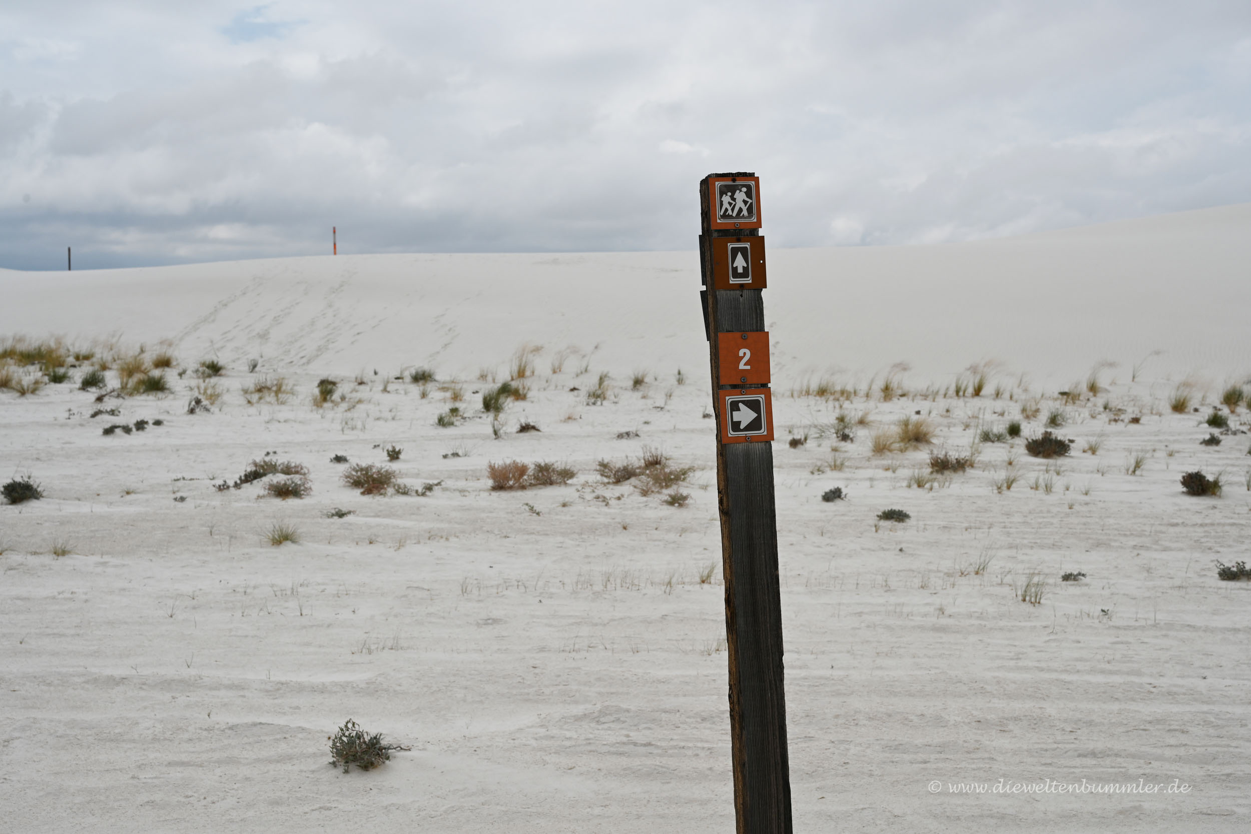 Trail in White Sands