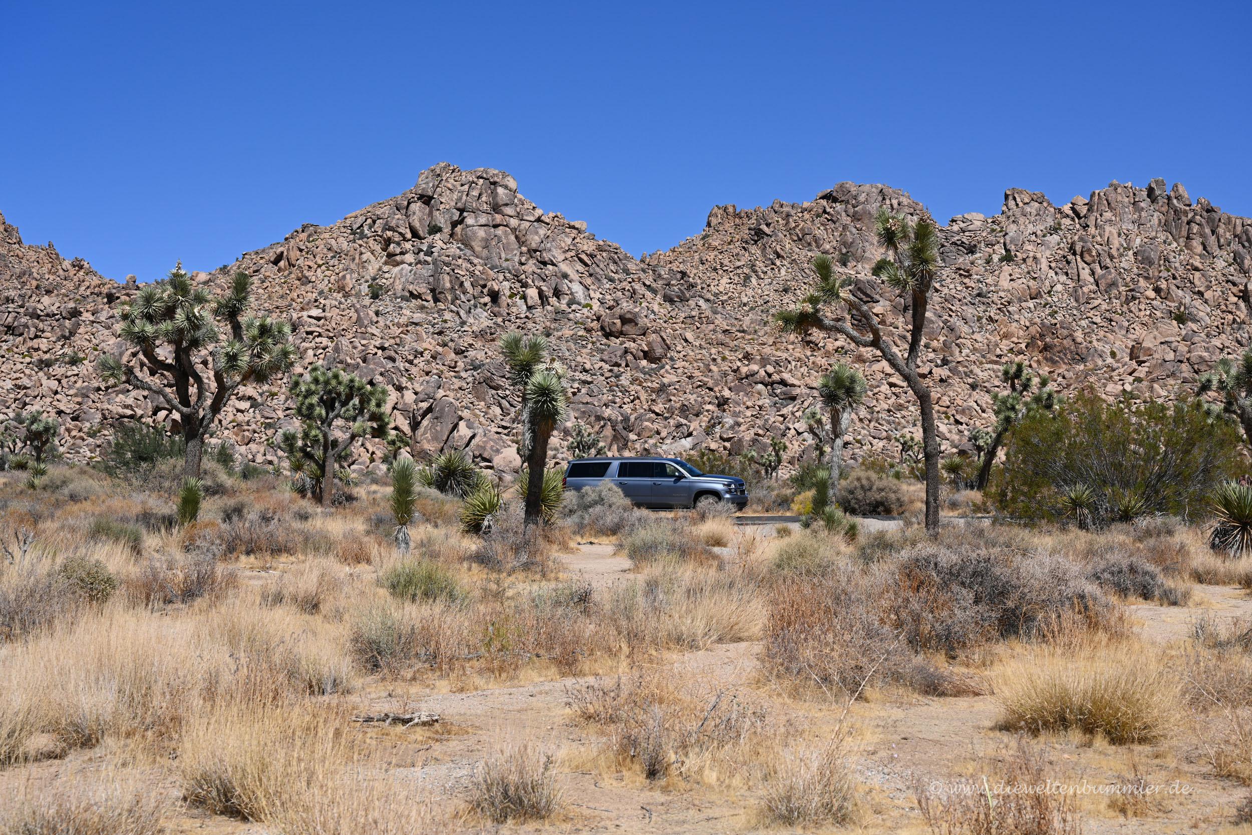Unterwegs in der kalifornischen Wüste