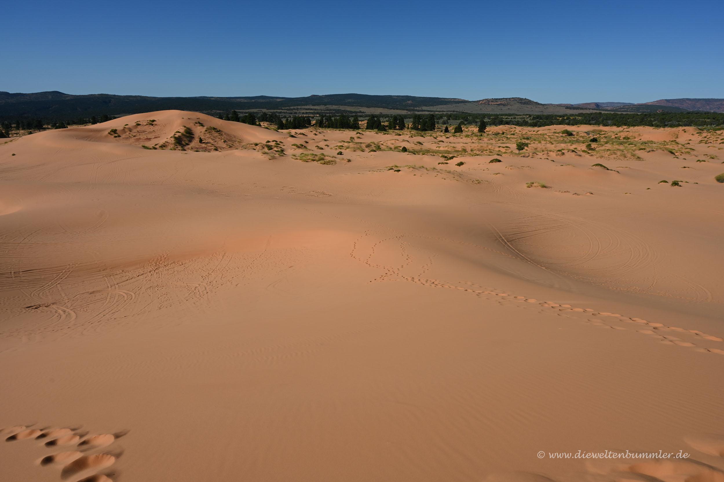 Weite Dünenlandschaft