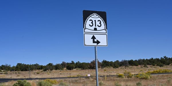 Highway 313