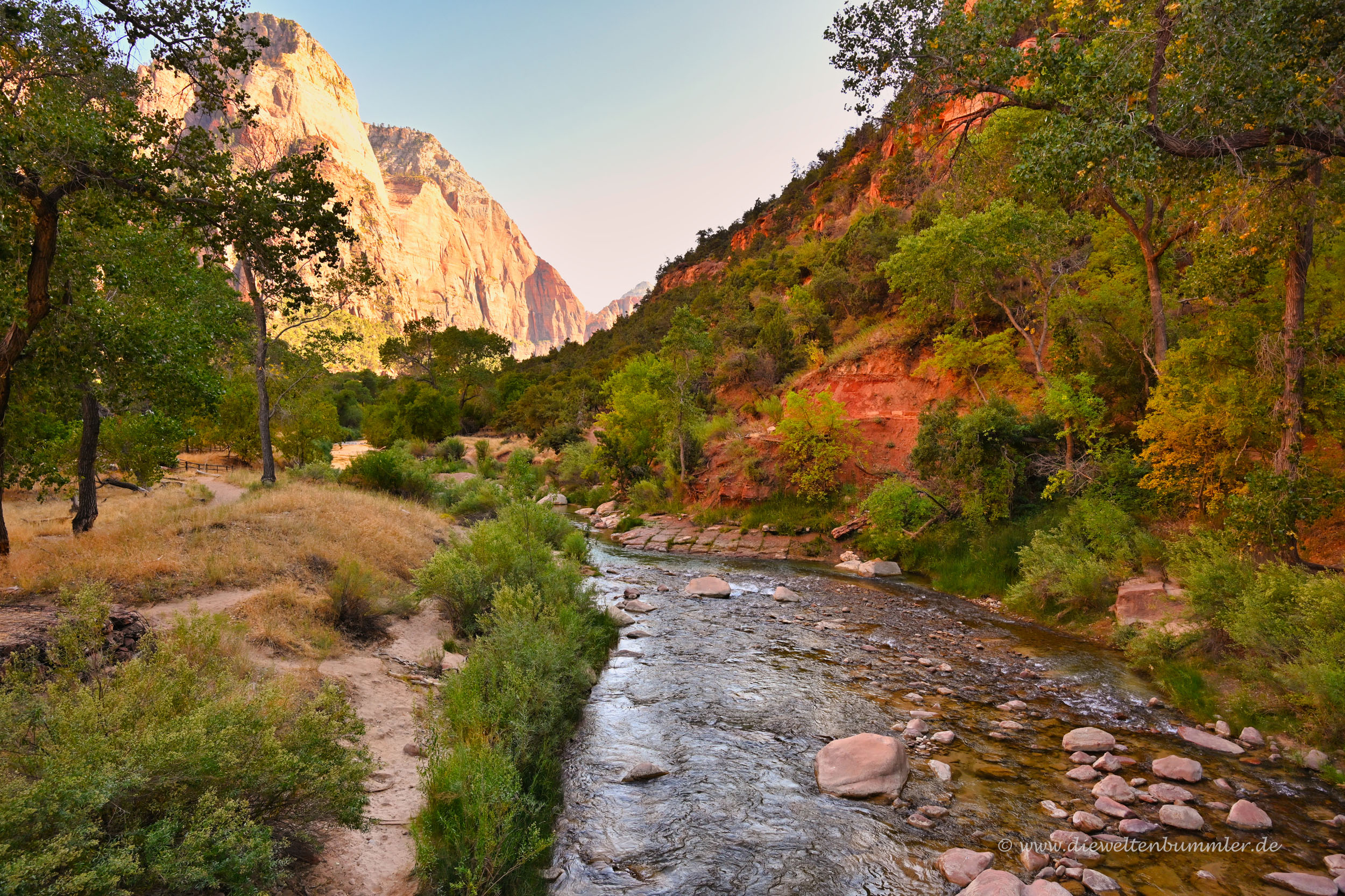 Fluss im Zion Nationalpark