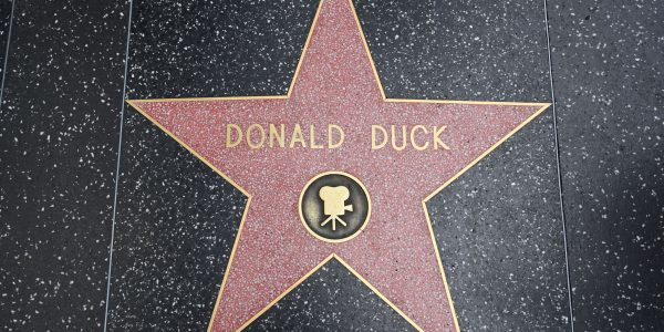 Donald Duck-Stern