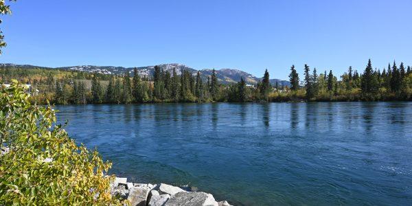Der Yukon River in Whitehorse