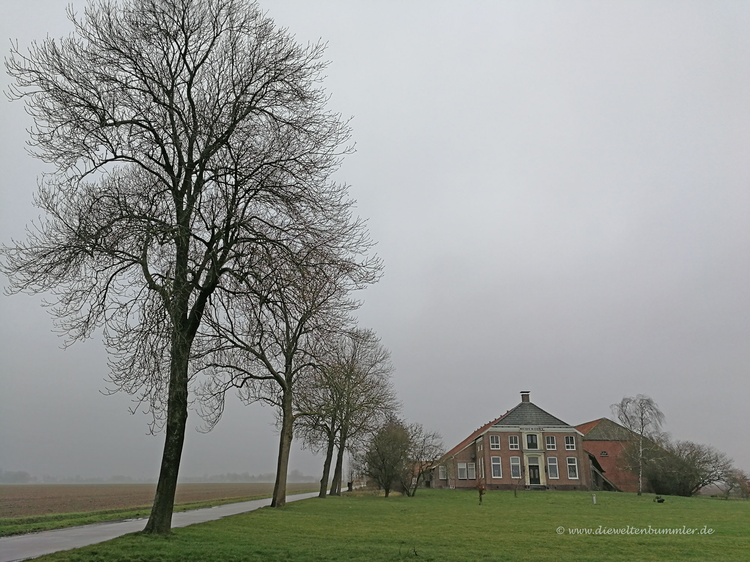 Polderlandschaft im Nebel