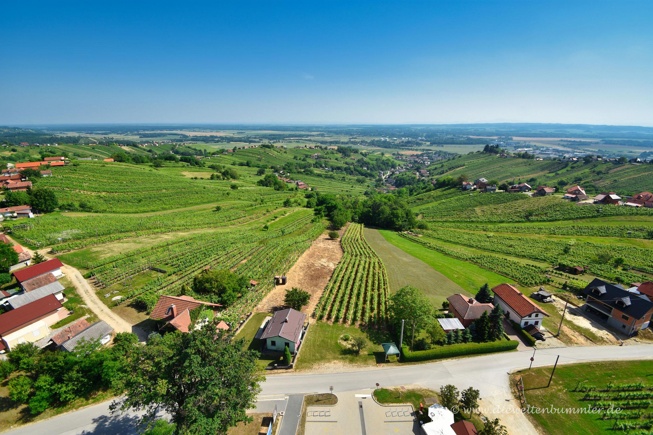 Ausblick über das Weinanbaugebiet