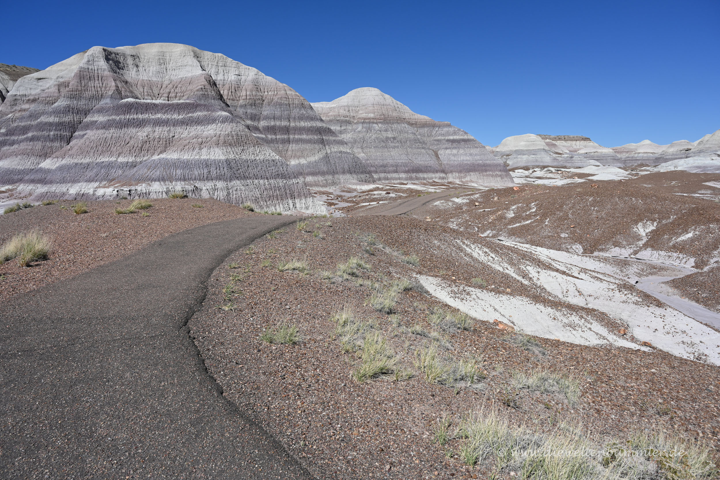 Blue Mesa im Nationalpark