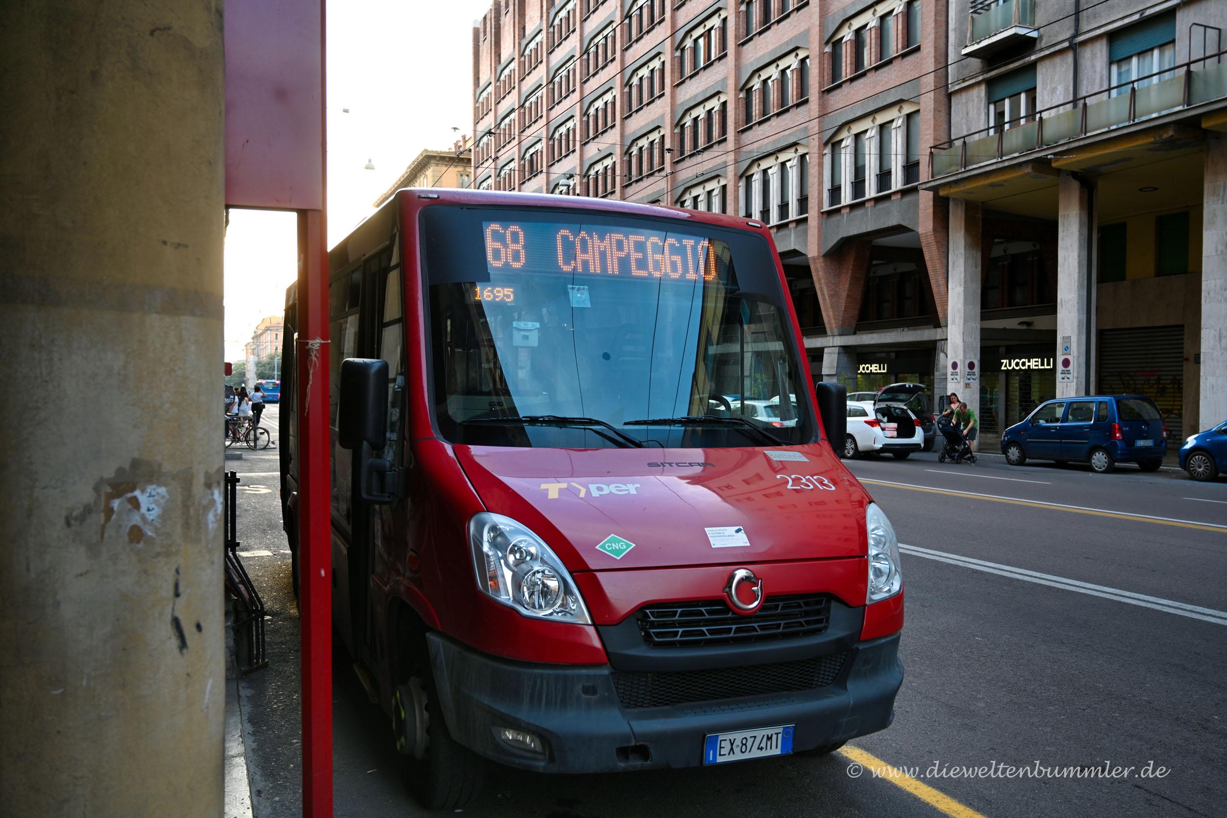 Bus zum Campingplatz