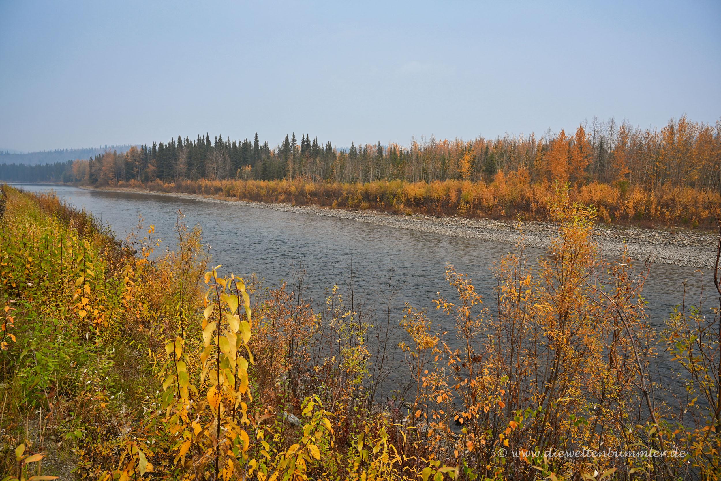 Der Klondike im Yukon