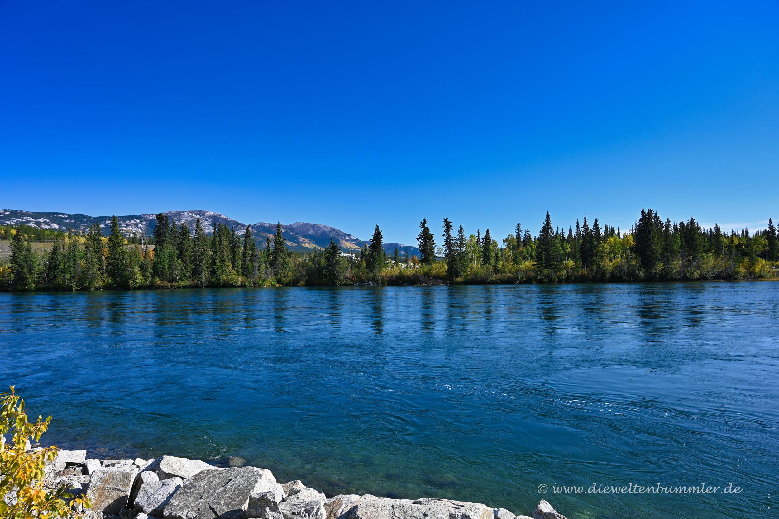 Der Yukon bei Whitehorse