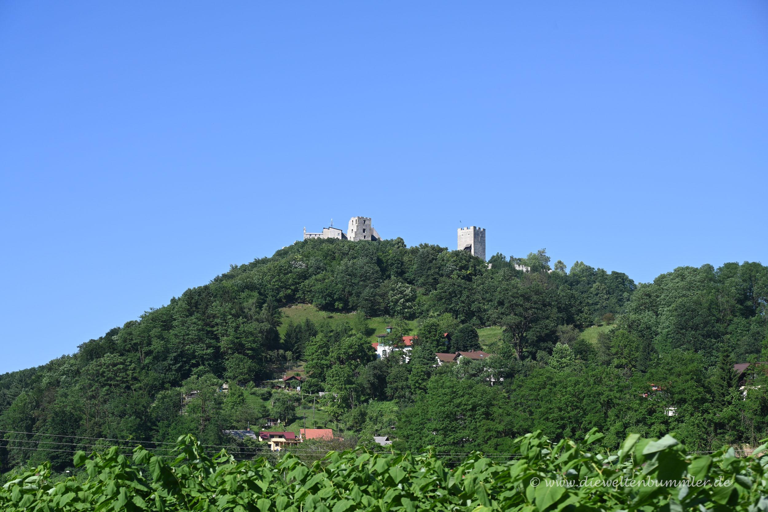 Die Burg Celje aus der Ferne