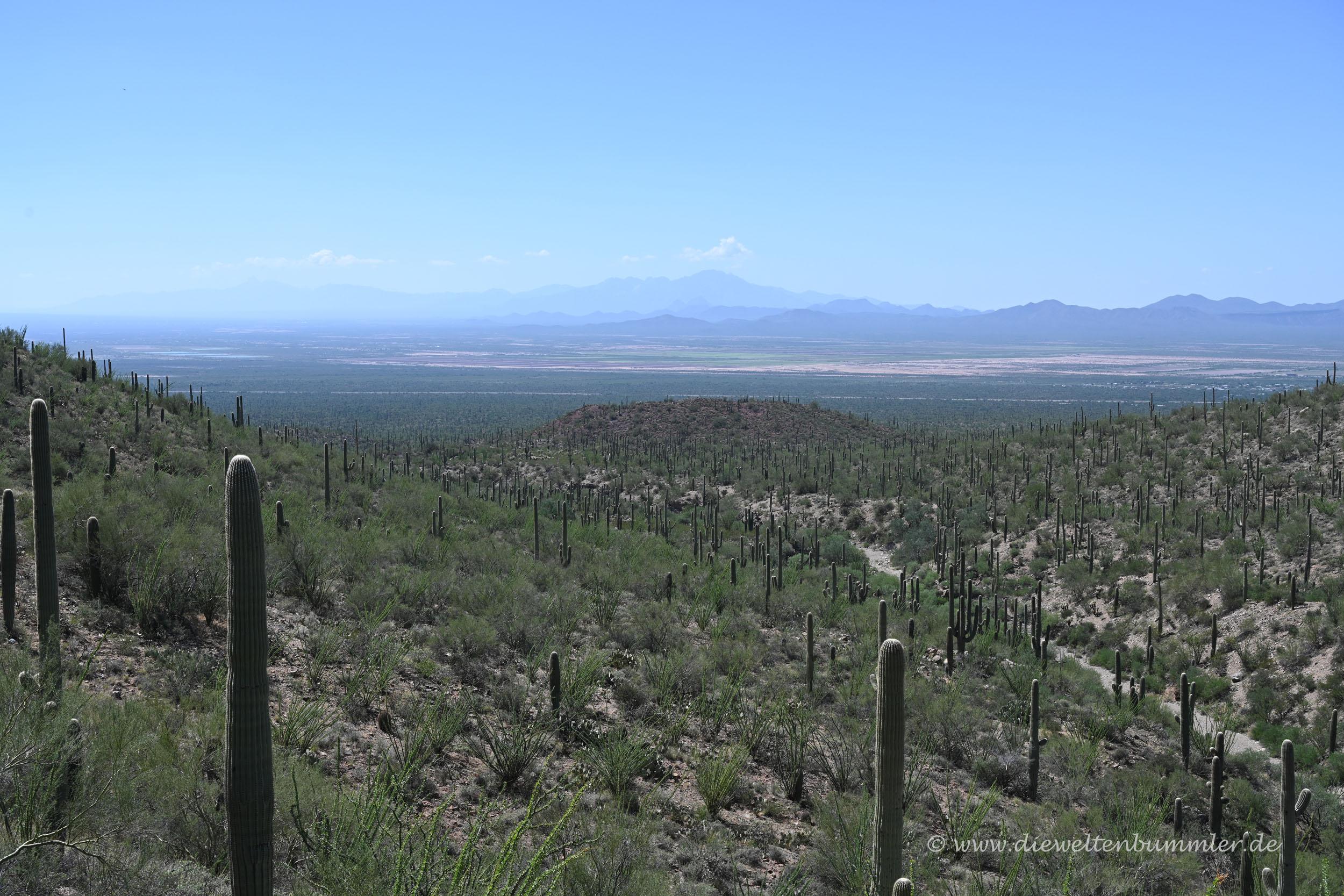 Ferner Blick im Nationalpark