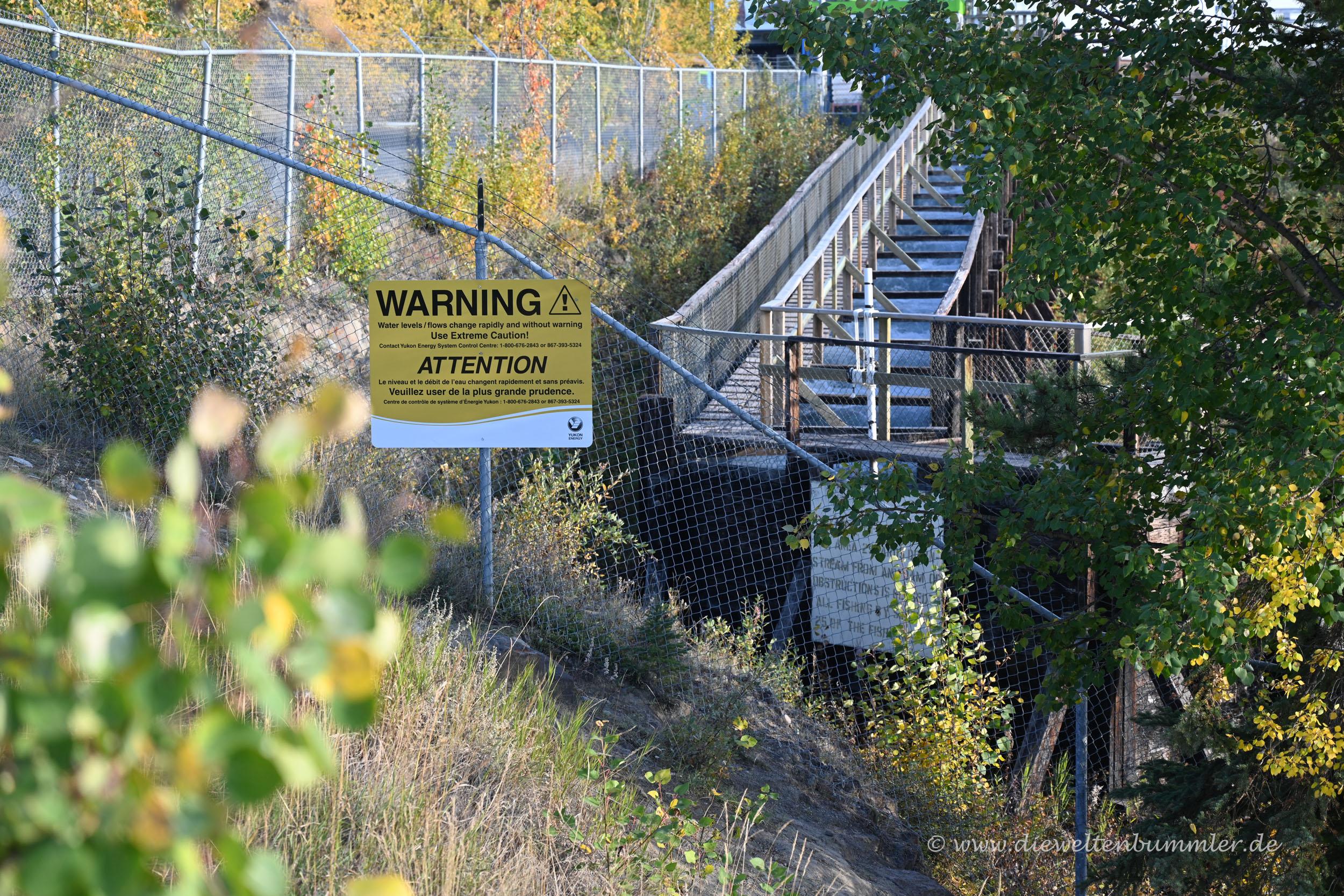 Fischtreppe am Yukon