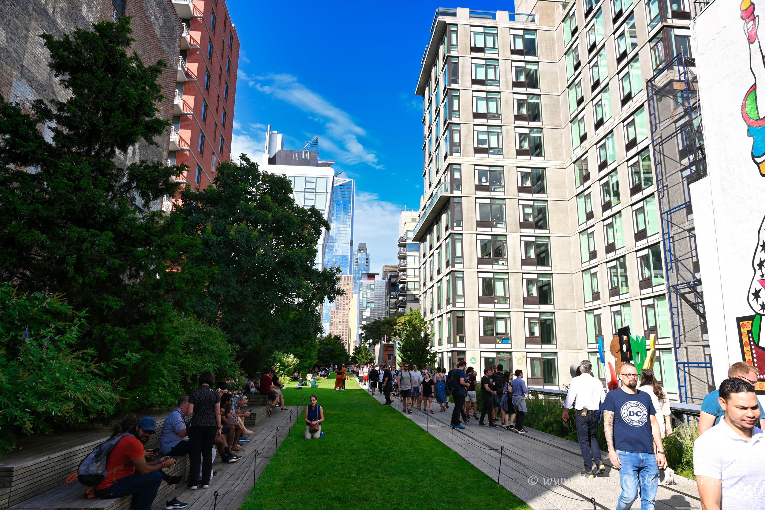 Grünstreifen auf der Highline
