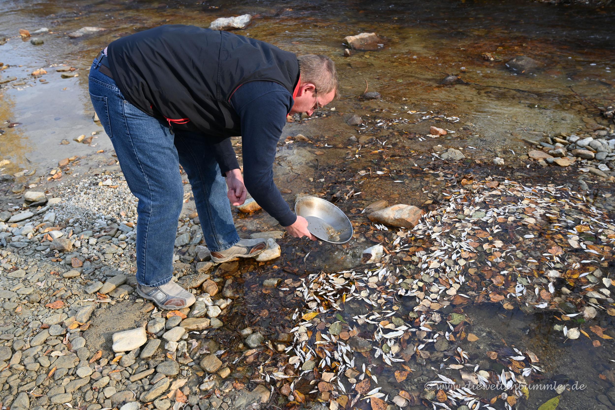 Ich wasche Gold im Bonanza Creek