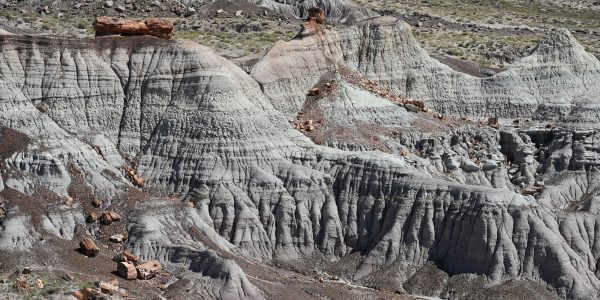 Im Petrified Forest Nationalpark