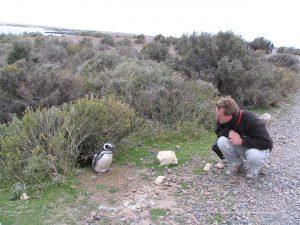 Michael Moll mit Pinguin