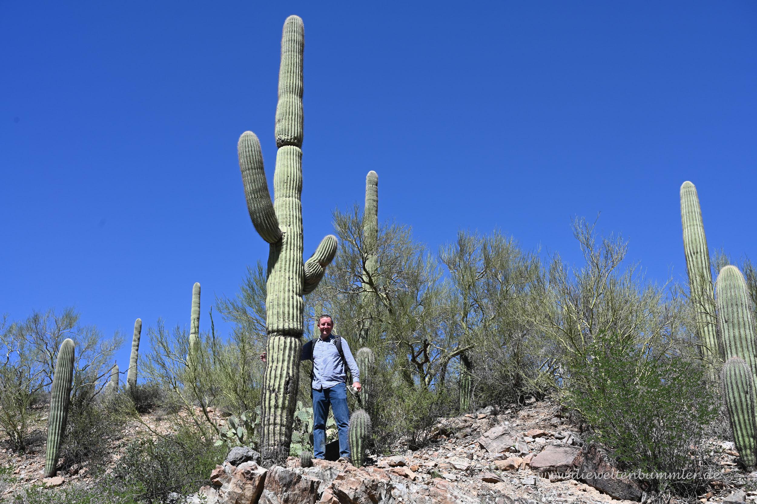 Michael Moll mit Saguaro-Kaktus