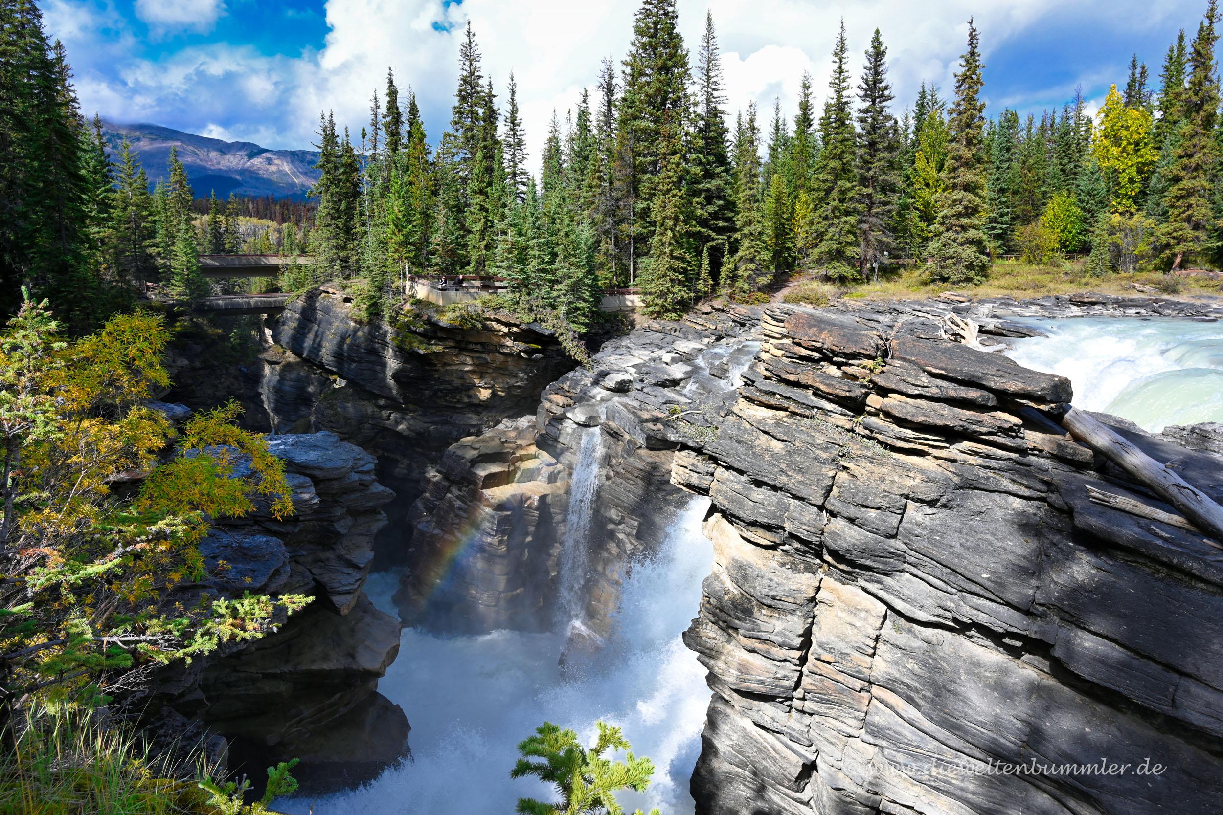 Wasserfall Athabasca Falls