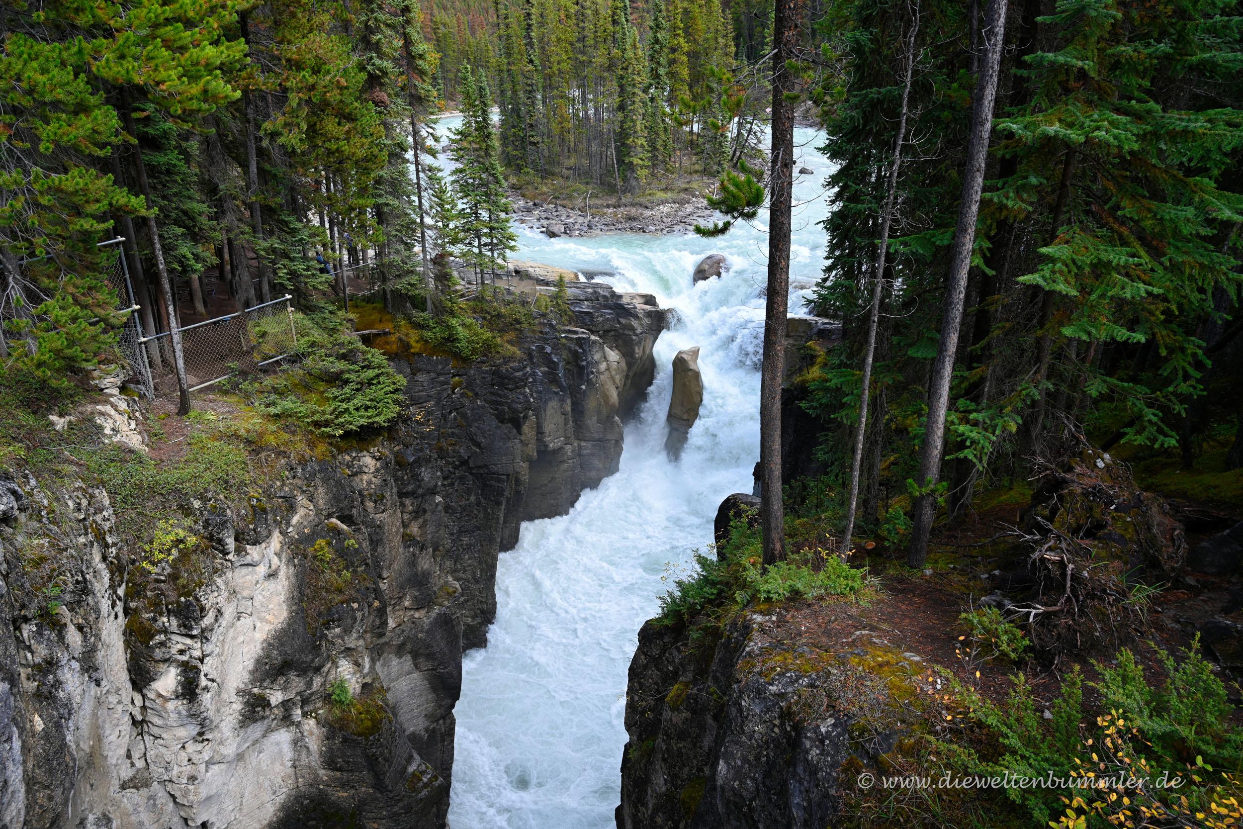 Weiterer Wasserfall - Sunwapta Falls