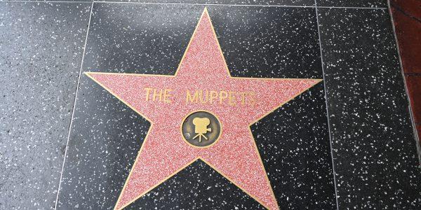 Auch die Muppets haben einen Stern