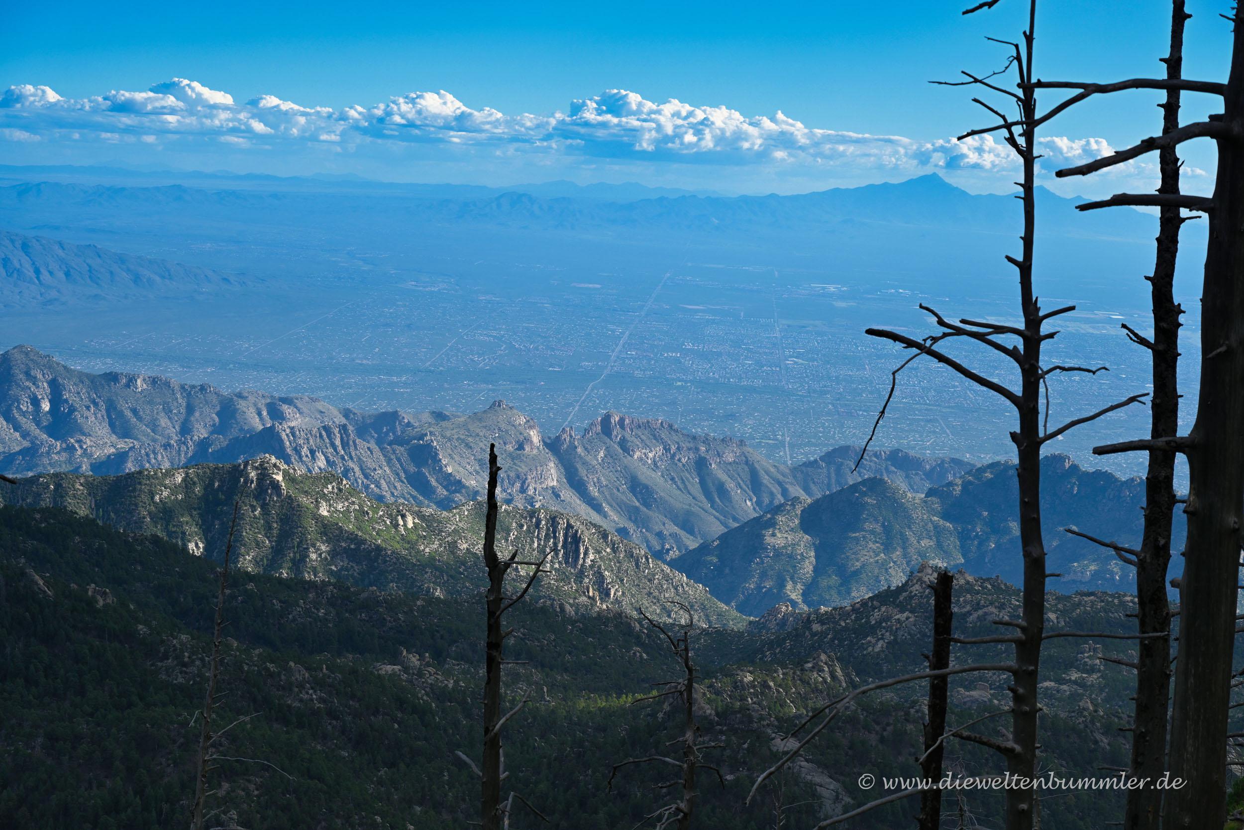 Ausblick über Tucson