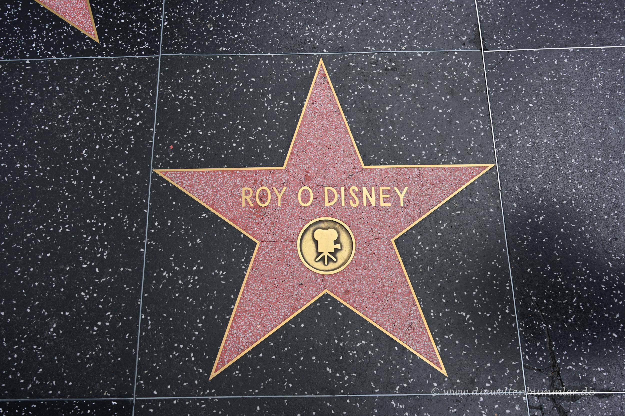 Der Bruder von Walt Disney