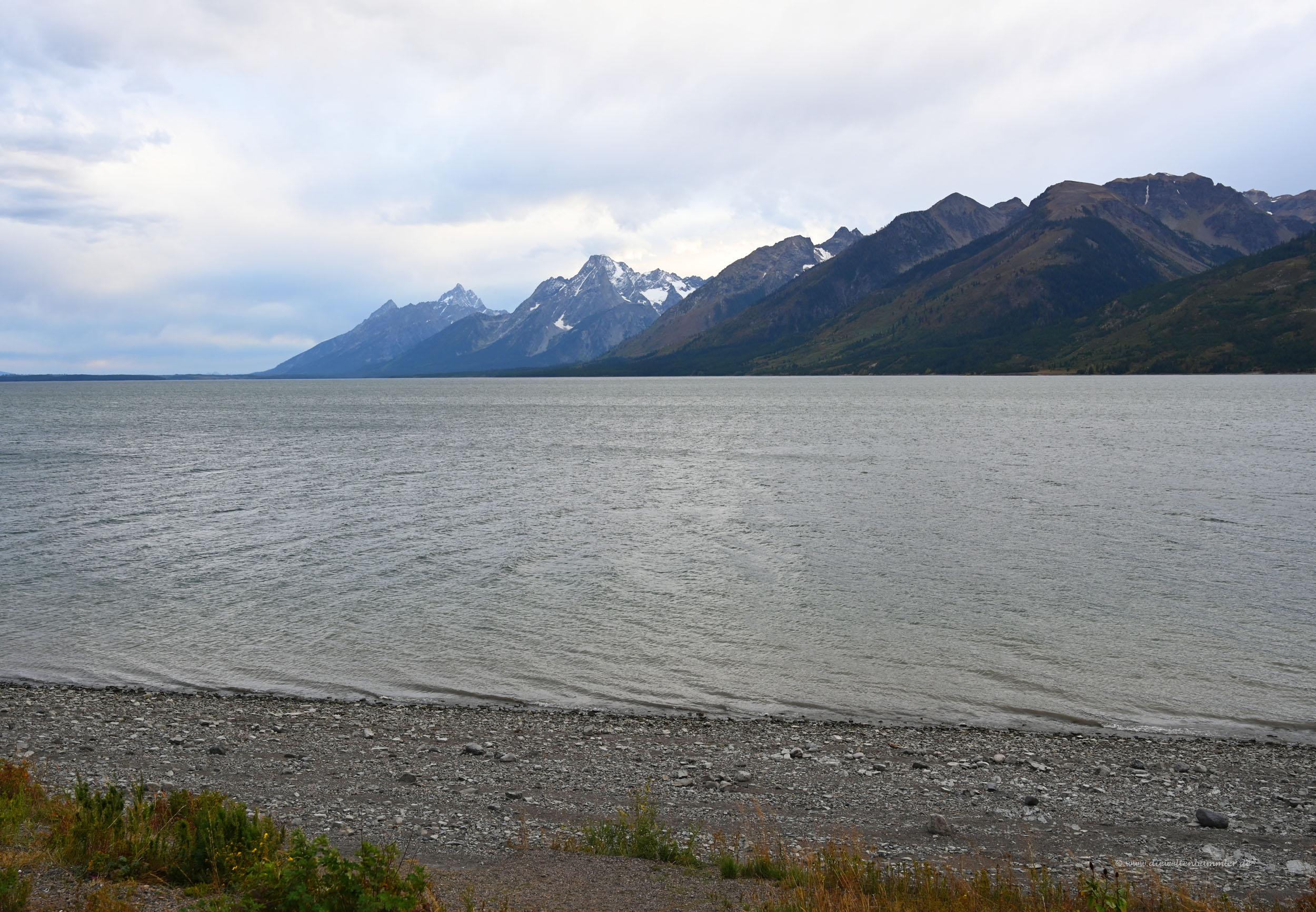 Der Jackson Lake im Nationalpark