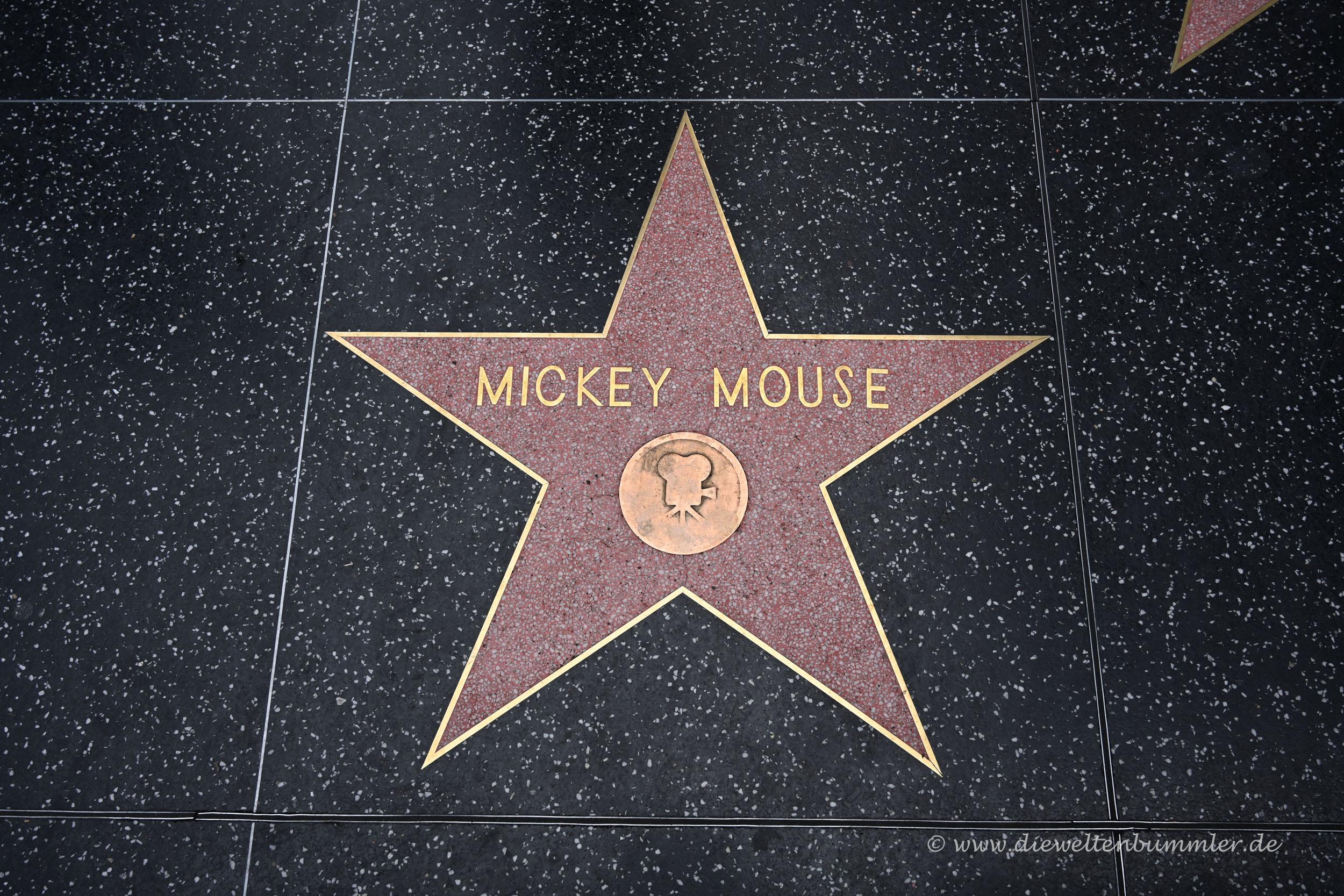 Der Stern von Micky Maus