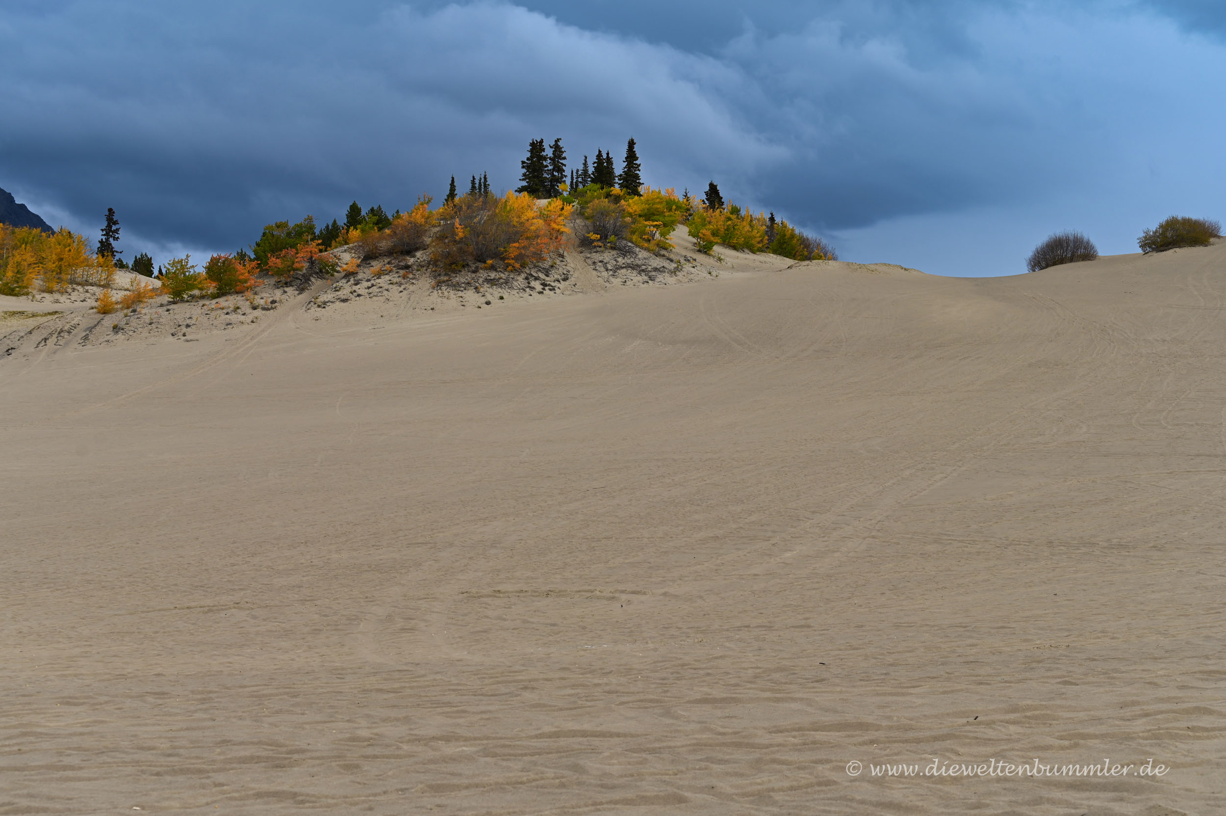 Die Sanddüne von Carcross
